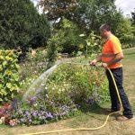 Ιούλιος-Αύγουστος Εργασίες στον Κήπο