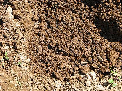 προσθέτω χώμα