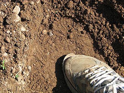 πατώ το χώμα και το κομπόστ για να κάτσει
