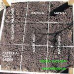 Τεχνητός Κήπος 1 τ.μ. - Πλεονεκτήματα και Εμπειρίες