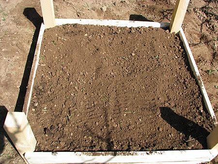 Στη συνέχεια, έριξα μία ακόμη στρώση από χώμα