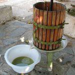Πως Φτιάχνω Κρασί (Οίνος) - Πληροφορίες για Ερασιτέχνες Οινοπαραγωγούς