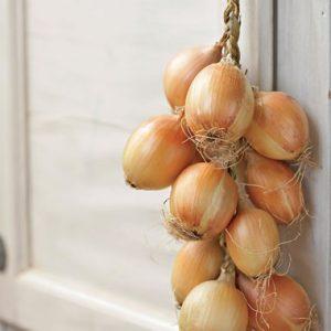 Πως Κάνω Πλεξούδες τα Κρεμμύδια και Σκόρδα