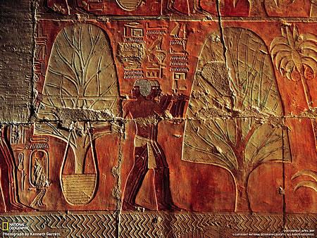 Μεταφύτευση δένδρων στην αρχαία Αίγυπτο