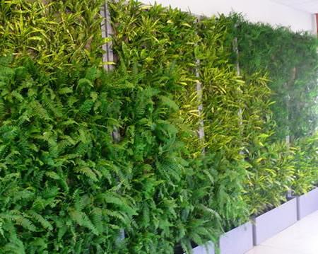 Τοίχος σε γραφεία στην Παιανία: κάθετη φύτευση