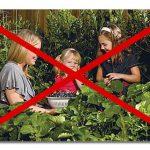 Δρακόντειος Ευρωπαϊκός Νόμος για τους Σπόρους (Plant Reproductive Material Law) - Τι Συμβαίνει;