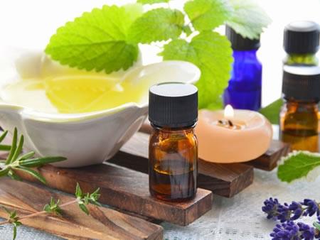 Αρωματικά και Φαρμακευτικά Φυτά: 6 βήματα για πετυχημένη καλλιέργεια και προώθηση!