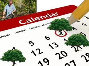 Ημερολόγιο Εργασιών Στον Κήπο - Εργασίες και Εποχή Σποράς