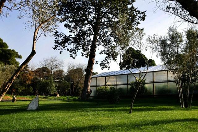 Μπενάκειο Φυτοπαθολογικό Ινστιτούτο - Θερμοκήπιο