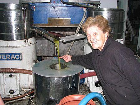 Είναι πάνω από 70 χρονών και μάζεψε μόνη της περισσότερα από 800 κιλά ελιές
