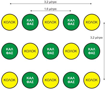 3 αδελφές.  Διάγραμμα σποράς καλαμποκιού, φασολιών και κολοκυθιών