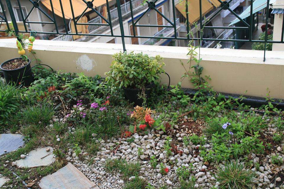 Κατασκευή Πράσινης Στέγης, Ταρατσόκηπου, Κήπου σε Ταράτσα. Όσα Πρέπει να Γνωρίζετε