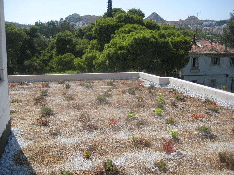 πράσινη στέγη 5