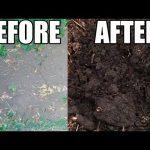 Εντυπωσιακή αλλαγή στην ποιότητα του χώματος με τη βοήθεια wood chips