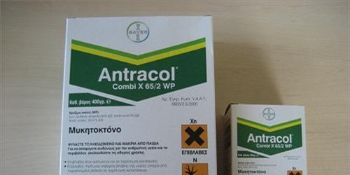 Τί σημαίνει το WP στην ετικέτα του Antracol