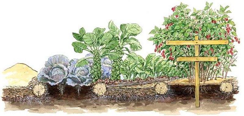 Το θρυμματισμένο ξύλο (wood chips), βελτιώνει την ποιότητα του χώματος και αυξάνει τιςσοδειές