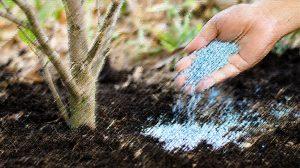 Λίπανση Δέντρων Λίπανση Λαχανικών και Άλλων Καλλιεργειών
