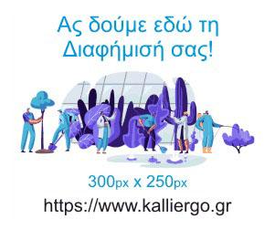 Δείγμα Διαφήμισης 01 300x250