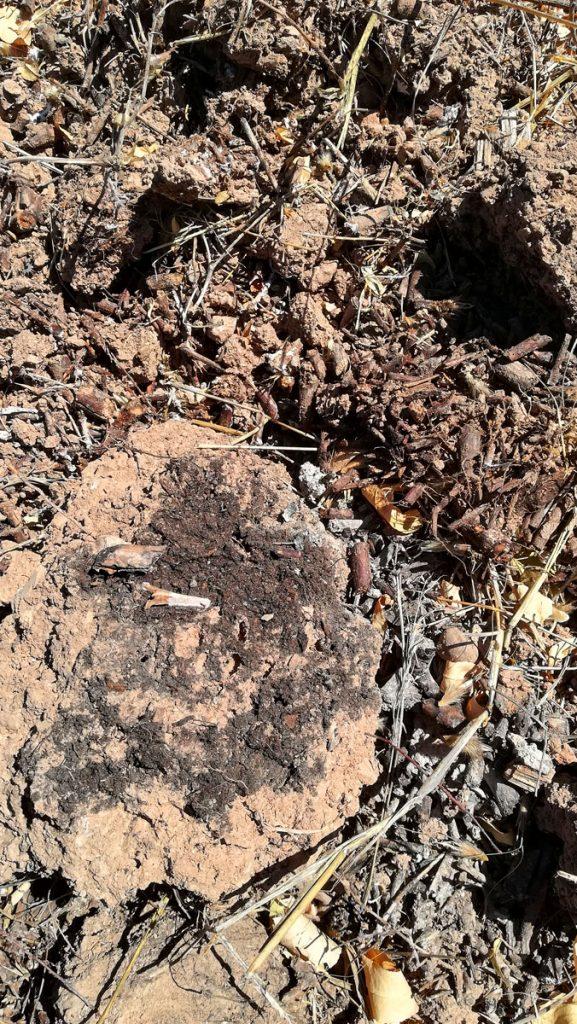 Χώμα σε παρτέρι